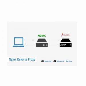 Install-Apache-Nginx-reverse-proxy1