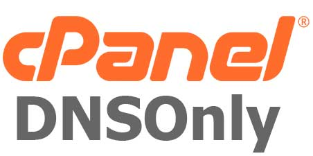 cpanel-dnsonly