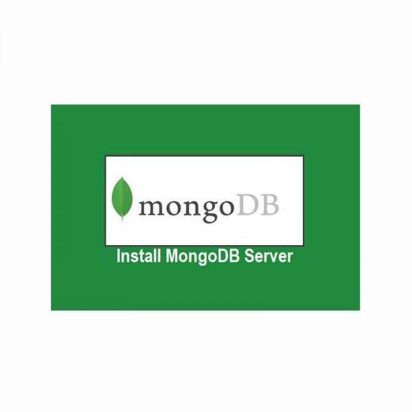 Install-MongoDB