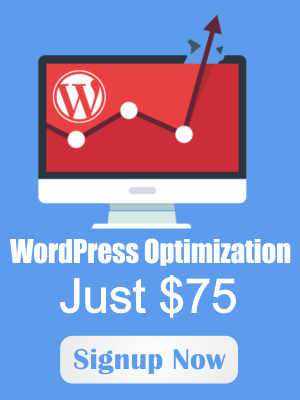wordpress-optimization
